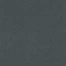 ARPA CST R 12,7mm KN BD CGS 0623 GRIS FERRO